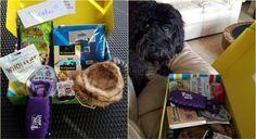 Pet Treater June 2016 Review