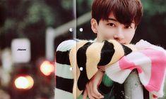 Jeonghan, Seventeen
