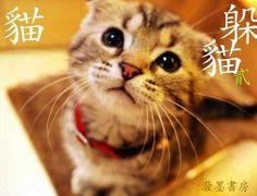 ZÄPP 02/03:躲貓貓1/2 潑墨書房 ... | 潑墨書房數位出版品