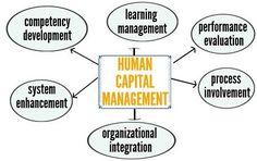 Human Capital Management Assignment Help