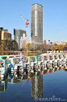 Ueno Park - Tokyo, Japan  © Lucian Milasan