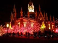 Exterior, Perfect Exterior Christmas Light Displays Design Ideas With Full Colour Lighting At Trees: Awesome Interesting Outdoor Christmas Lighting Tips Christmas Light Displays, Decorating With Christmas Lights, Outdoor Christmas Decorations, Light Decorations, Christmas Love, A Christmas Story, Christmas Pictures, Christmas Houses, Exterior Christmas Lights