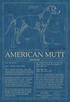 #vintage #blueprint #mutt