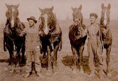 farmers | Farmers, Pierce County, undated.