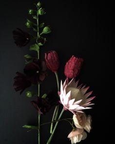 paper proteas, hollyhocks, garden roses