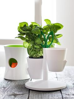 Normann Copenhagen Herb Stand dostępny na FabrykaForm.pl