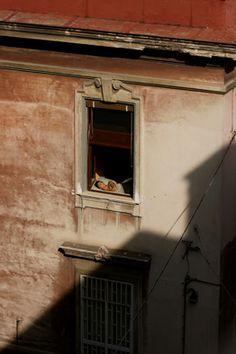 SENZA TITOLO 01 IOLE CAPASSO Stampa digitale su carta Hahnemuhle Fine art Pearl 285 grm. Fotografia digitale 70x50 cm, anno 2008. Dietro le quinte di una città, una donna si rigenera al sole dalla finestra nella propria camera da letto.