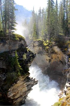 Jasper National Park- Canada