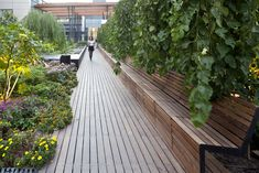 07 projeto nuvem verde por temaland arquitetura da paisagem