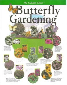 Butterfly Gardening Plan - create your own garden with this key map filled with the right plant combinations that attract butterflies Potager Bio, Hummingbird Garden, My Secret Garden, Lawn And Garden, Terrace Garden, Garden Hammock, Moss Garden, Garden Table, Garden Spaces