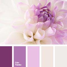 Color Palette #3267