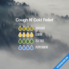 Cough N' Cold Relief - Essential Oil Diffuser Blend