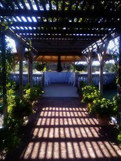Rose Pavilion at Clark Gardens in Weatherford Clark Gardens, Pavilion, Sidewalk, Park, Rose, Pink, Side Walkway, Walkway, Parks