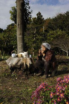 """Misao the Big Mama and Fukumaru the Cat"" by Miyoko Ihara (Japanese Photographer) Animals And Pets, Cute Animals, Amor Animal, Best Friends For Life, Chiba, Cat People, White Cats, Fauna, Beautiful Cats"