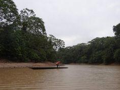 Yasuni National Park.