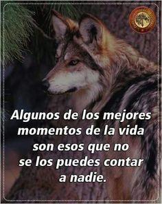 Resultado De Imagen Para Lobos Frases Dibujos Pinterest Wolf