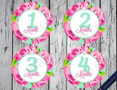 Printable Lilly Pulitzer Inspired Monthly Baby by BirdieSaysCawCaw, $6.00