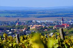 Wine Country, Hungary, Dolores Park, Travel, Viajes, Destinations, Traveling, Trips