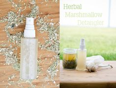 Herbal Marshmallow Root Detangler - aloe vera juice, marshmallow root decoction, horsetail and oatstraw all combine for a wonderfully great detangler! Great for kids or adults!