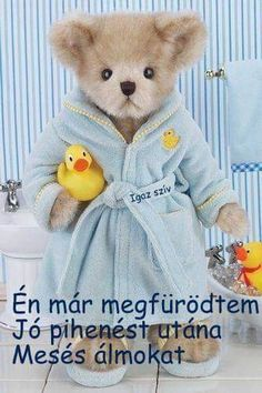 Osztva Jaba, Smiley, Good Night, Teddy Bear, Pictures, Figurative, Love, Nighty Night, Photos
