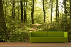 1000 Images About Attic Bedroom On Pinterest Wallpaper Murals Forest Wall