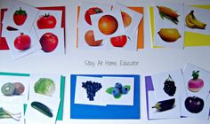 Food Color Sort - Stay At Home Educator