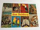 Postkarte Zoo Duisburg /  Ende 60er/Anfang 70er Jahren