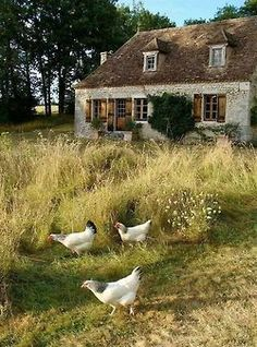 Amazing French Country Cottage Decor 42 Traveling through fabulous and unusual countries. A vivid journey through countries with extraordinary architecture. French Country Cottage, French Farmhouse, Country Life, Cottage Style, Country Decor, Living In The Country, Country Charm, Country Style, Country Cottages