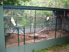 i love this aviary design