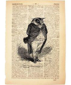 vintage book print art  print - owl
