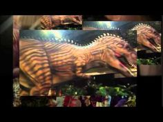 Dinosaur Discovery: Lost Creatures of the Cretaceous has opened its doors at the Museum of Western Australia. Featuring over 20 life-size animatronic dinosau. Dinosaur Discovery, Family Events, Western Australia, Perth, Museum, Museums