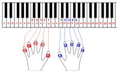 Keyboard Lessons, Material Didático, Music Class, Piano Music, Lily, Learning, Naruto, Design, Advertising Photography