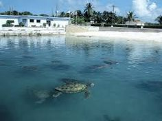Grand Cayman in George Town