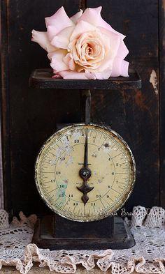 pink rose + black vintage scale= <3
