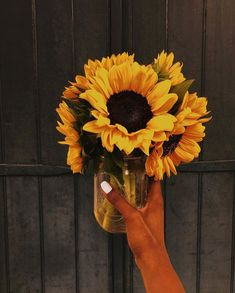 19a402416c8 37 Best SUNFLOWER images in 2019