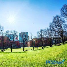 W Parku przy Starym Browarze [fot. M. Woźniak]