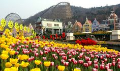 Seoul, Korea-Everland Resort--    Sooo much fun!