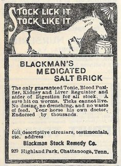 1904 BLACKMAN MEDICATED SALT BRICK STOCK REMEDY AD CHATTANOOGA TN TENNESSEE