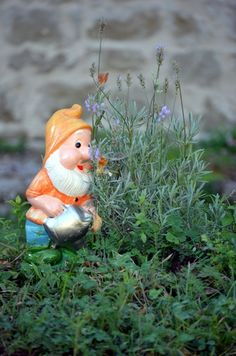 Thank you little gnome.  :)