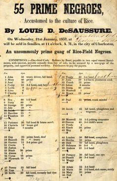 Louis D. De Saussure – 55 Prime Negroes, Accustomed to the culture of Rice. By Louis D. De Saussure. (1857)