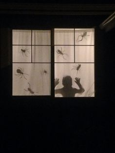 Spooky silhouette scene  Cut outs on dark paper taped to white curtains and just the room light on. May use a strobe light or flickering bulb on Halloween night.