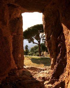 Fabolous point of view! Point Of View, Siena, Tuscany, Explore, Landscape, Nature, Plants, Travel, Paisajes