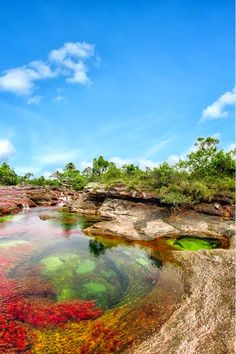 The Liquid Rainbow River Caño Cristales, Colombia - Colombia, Republic of Colombia, is a country situated in the northwest of South America - Rainbow River, Places To Travel, Places To See, Travel Destinations, Travel Tourism, Places Around The World, Around The Worlds, Beautiful World, Beautiful Places