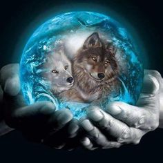 Diamond Painting Kits Full Drill,Astory DIY Diamond Painting Kits Rhinestone Crystal Embroidery Pictures Cross Stitch Art Craft for Home Decor Wolf Love 30 * * Beautiful Wolves, Animals Beautiful, Cute Animals, Fantasy Wolf, Fantasy Art, Wolf Artwork, Wolf Spirit Animal, Wolf Wallpaper, Wolf Pictures