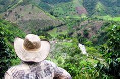 NECESIDADES DE LA REGIÓN Impactos negativos sobre el agua y le uso del suelo por el desarrollo de las actividades agropecuarios de la región da cuanta de la baja sostenibilidad ambiental de los modelos productivos