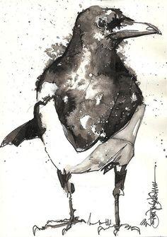 magpie V by Jennifer Kraska, via Flickr