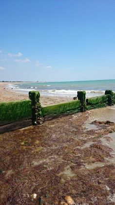 Pagham seafront