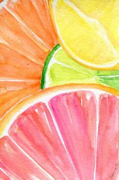 Ruby Red Grapefruit, Lemon, Orange, Lime slices on aqua Watercolor Painting, Original Fruit ART, 4 x 6