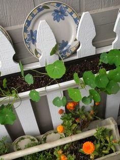 Pflanztopf Lafiora Big Pot Terrakotta Ø 56 H 47 Cm Terracotta ... Dachterrasse Im Ostasiatischen Stil