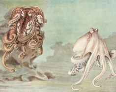 Octopus Art, 1930s Ocean Art, Vintage Fish Print, Beach House Decor, Home Office Wall Art No. 206 (One in an interesting series of fish art)